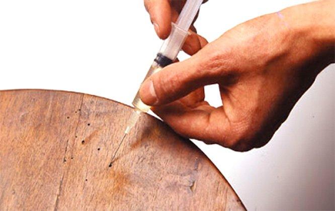 טיפול בתולעי עץ